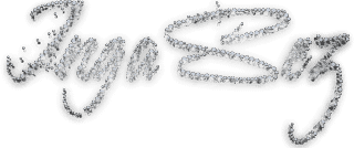 Ingasez Logo